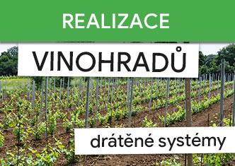 Realizace vinohradů