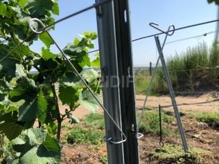 Spona pro spínání dvojdrátí ve vinohradu